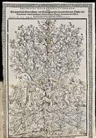 Delineatio malae arboris Lutheranae